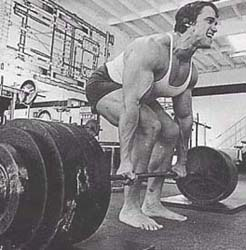 Arnold dead lifting